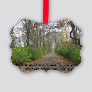 Straight Path2 copy Picture Ornament