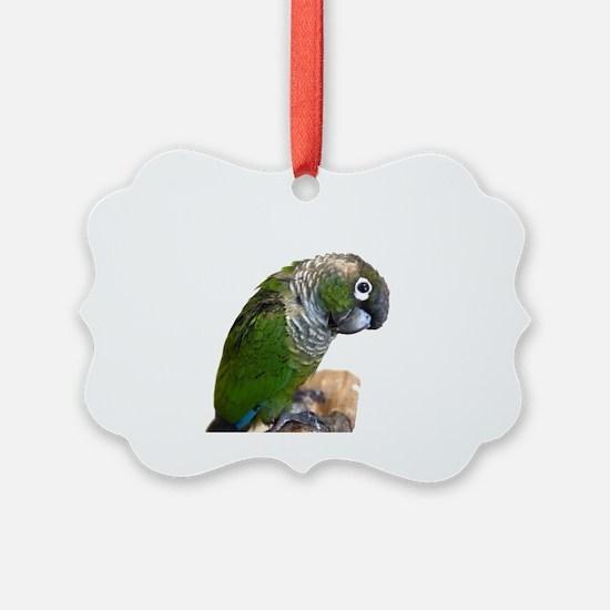 rin cutie Ornament