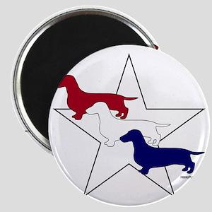 PatrioticDoxies Magnet