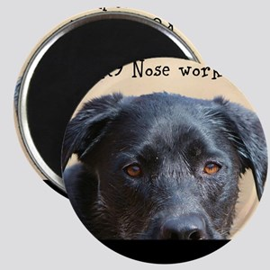 Nose knows Magnets