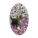 Emma Gray Tabby Kitten 20x12 Oval Wall Decal