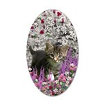 Emma Gray Tabby Kitten 35x21 Oval Wall Decal