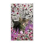 Emma Gray Tabby Kitten 20x12 Wall Decal