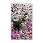 Emma Gray Tabby Kitten 35x21 Wall Decal