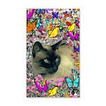 Stella Cat Butterflies 35x21 Wall Decal