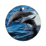 Bottlenose Dolphins Ornament