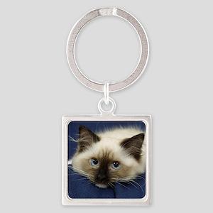 Ragdoll Cat 9W082D-020 Square Keychain