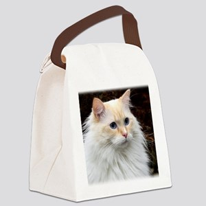 Ragdoll Cat 9Y448D-019 Canvas Lunch Bag