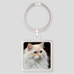 Ragdoll Cat 9Y448D-019 Square Keychain