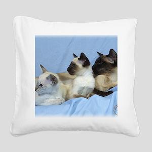 Siamese Cat 9W055D-074 Square Canvas Pillow