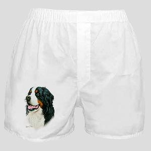 Bernese Boxer Shorts