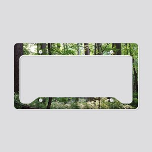 GermantownForestMiniPoster License Plate Holder