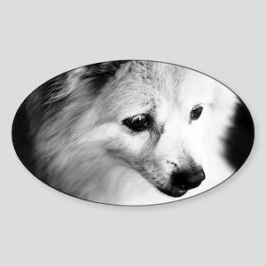 AFPE15 Sticker (Oval)