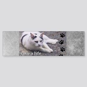 Adopt a Stray Sticker (Bumper)