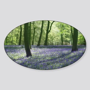 English Bluebells Sticker (Oval)