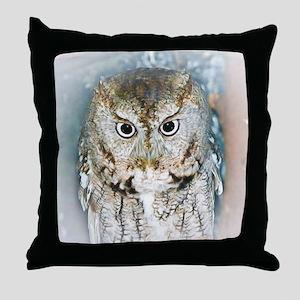 OWL (2) BIG Throw Pillow