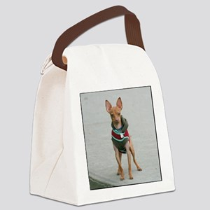 chihuahua dog Canvas Lunch Bag