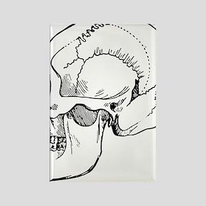 stone age skull Rectangle Magnet