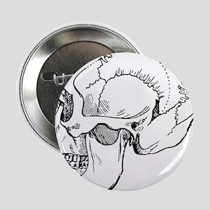 """stone age skull 2.25"""" Button"""