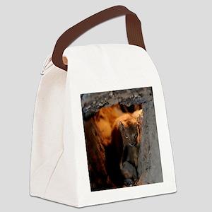 Evil_Squirrel_iPad2 Canvas Lunch Bag