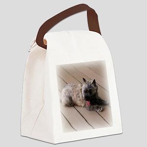 tiredsqu Canvas Lunch Bag