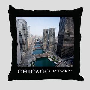 5D-21 IMG_0015-POSTER Throw Pillow