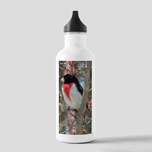 RBGa2x3 Stainless Water Bottle 1.0L