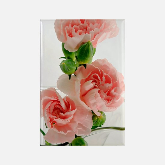 PinkCarnations_slider Rectangle Magnet