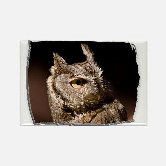 (16) Burrowing Owl Profile Rectangle Magnet