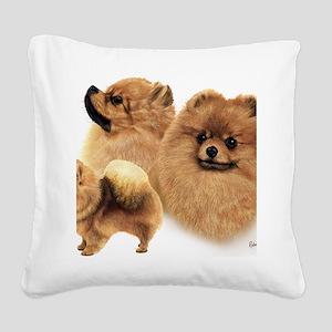 Pomeranian Multi Square Canvas Pillow