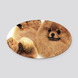 Pomeranian Multi Oval Car Magnet