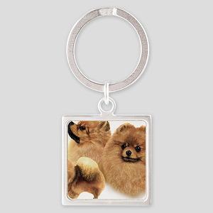Pomeranian Multi Square Keychain