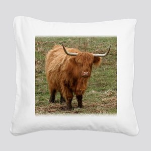 Highland Cow 9Y316D-053 Square Canvas Pillow