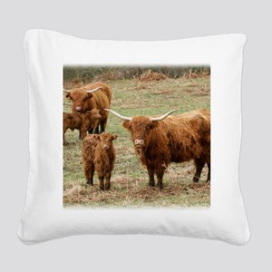 Highland Cattle 9Y316D-055 Square Canvas Pillow