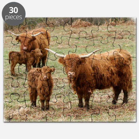 Highland Cattle 9Y316D-055 Puzzle