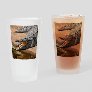 GatorReflection_stadium Drinking Glass