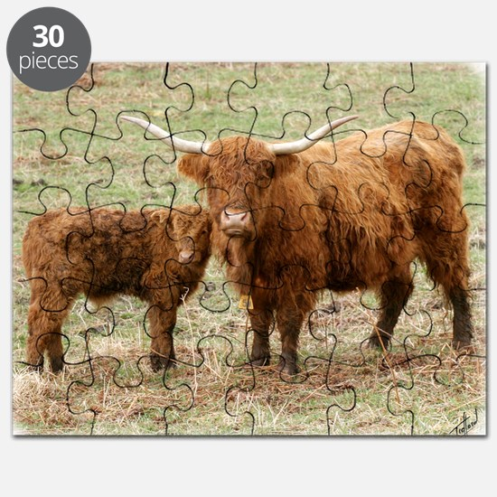 Highland Cow and calf 9Y316D-045 Puzzle