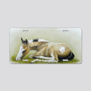 buckskin paint foal Aluminum License Plate