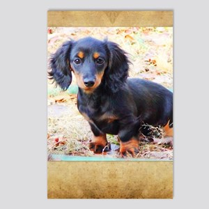 Puppy Love Doxie Postcards (Package of 8)