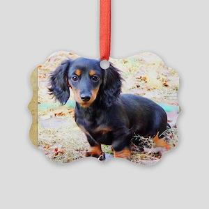 Puppy Love Doxie Picture Ornament