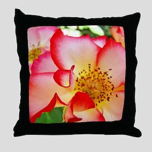 A Rose Pink White 12M Roses Rose Gard Throw Pillow
