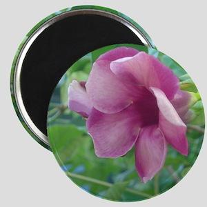 Tropical Flower Magnet