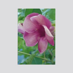 Tropical Flower Rectangle Magnet