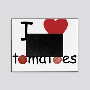 tomatoes Picture Frame