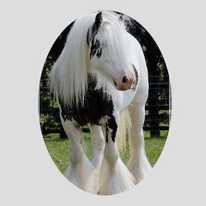 Gypsy Horse Stallion Oval Ornament