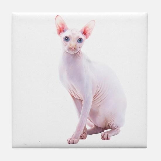 Pink Beauty Tile Coaster