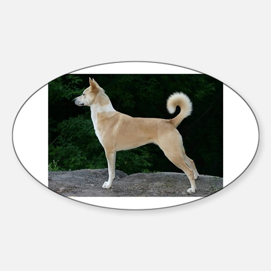 canaan dog full second Decal