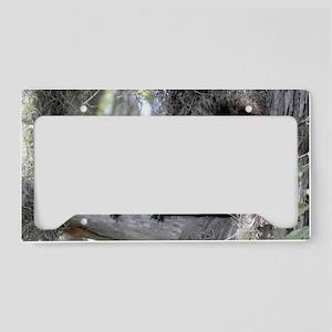 Alabama Squirrel DD License Plate Holder