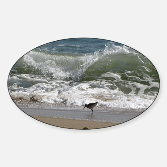 KDH_Bird_Wave_16x20_withCopyright Sticker (Oval)
