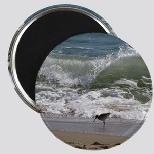 KDH_Bird_Wave_16x20_withCopyright Magnet